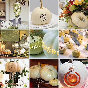 Click on the credits below to see more about the weddings ideas